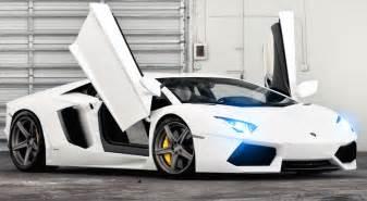 White Lamborghini White Lamborghini Nomana Bakes