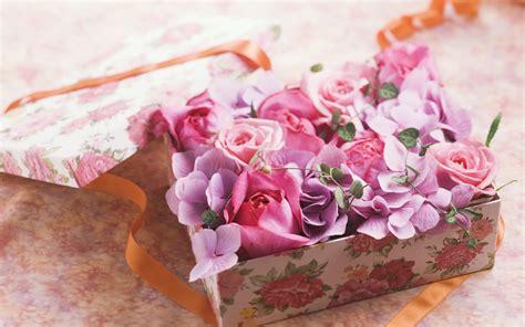 wallpaper flower gift wallpaper box flower gift ribbon rose desktop