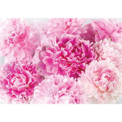 Rosa Bl Hender Baum 2259 by Blumen Bl 252 Ten Blumen Bl Ten Bilder Gratis Blumen Bl Ten