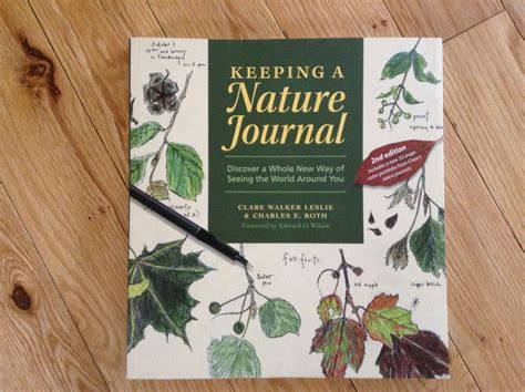 libro keeping a nature journal keeping a nature journal part 1 the northern homeschool mama