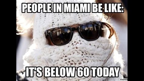 Winter Meme - miami winter memes go viral on social media