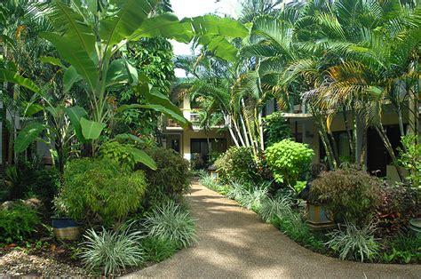 suite room kitchen tropical rainforest garden tropical garden landscape garden ideas