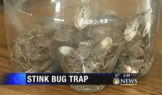diy bed bug trap as 25 melhores ideias de bug trap no pinterest repelente