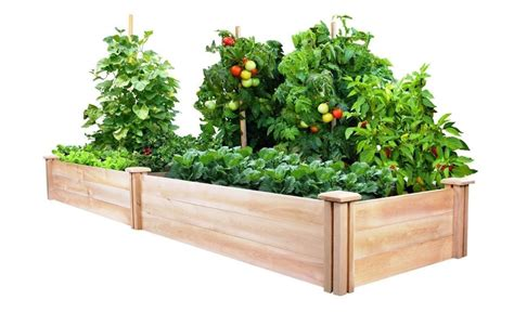 Cedar Planter Box Kits by Raised Garden Bed Kit Cedar Vegetable Flower Box Elevated
