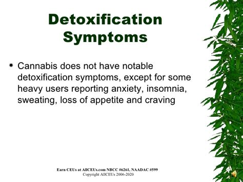 Cannabis Detox Stomach Hurts by Drugs Of Abuse Mariajuana