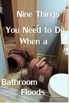 how to clean a flooded bathroom pet peeves on pinterest pet peeves hillbilly and grammar