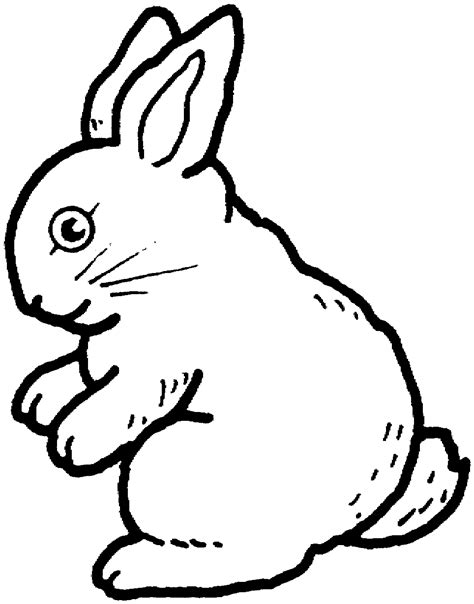 coloring pages for rabbits free printable rabbit coloring pages for