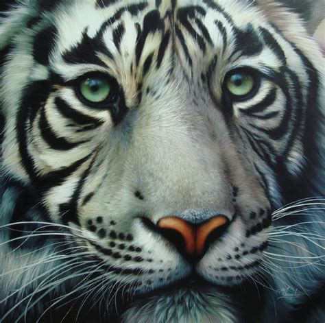 White Tiger L by Pin White Tiger Canvas Refyf0060 On
