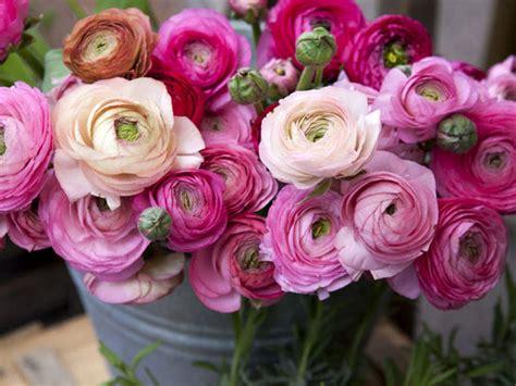 mercato di fiori mostra mercato di fiori e artigianato un tuffo nella
