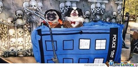 dr who pug doctor who doctor pugs that s who by rawkinwitwalken meme center