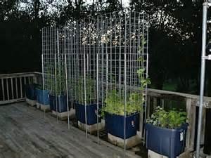 plans for a tomato planter box plans diy free