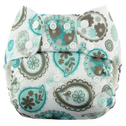 Blueberry Bag Paisley swaddlebees simplex one size all in one junction
