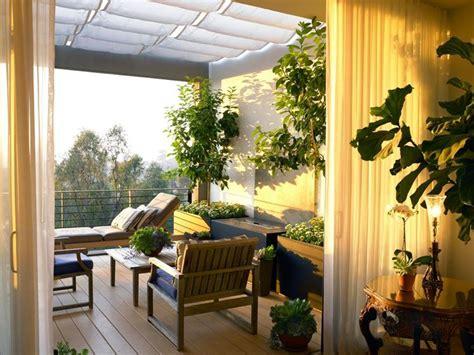 piante sempreverdi per terrazzo alberi da balcone piante da terrazzo alberi per il