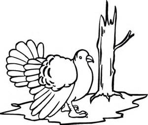 coloring page wild turkey wild turkey coloring page free printable coloring pages