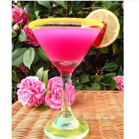 pretty alcoholic drinks 76 best drinks cocktails and shots images on pinterest