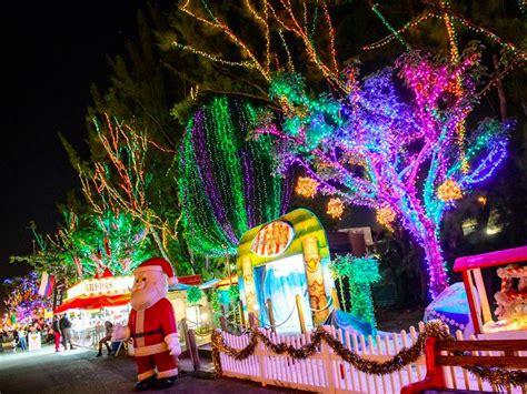 why not to put christmas lights on a palm tree christmas