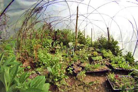 rebar garden convertible grow dome greenhouse research