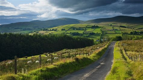 gold wallpaper ireland gold in ulster s hills is among best in the world