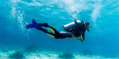 Tips For Women In Bed Training Tips Trim While Diving Scuba Diver Life