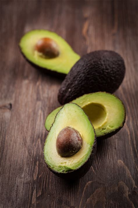 dogs eat avocado can dogs eat avocados if they re hungry napas s daily growl