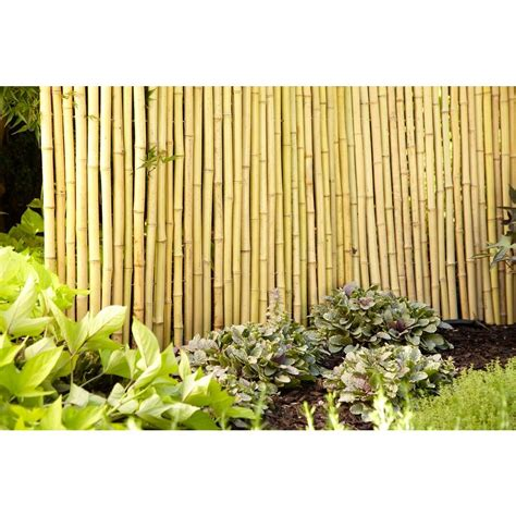 backyard xscapes backyard xscapes 6 ft x 16 ft reed fencing the home depot