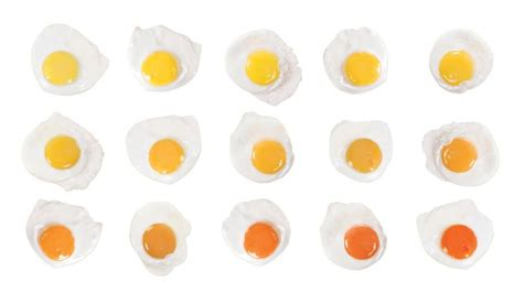 egg yolk color different yolks for different folks why we judge an egg