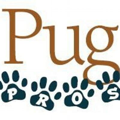pug rescue san francisco pros pug rescue prospugrescue