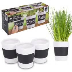kitchen herb pots greenhouse kitchen window herb garden pots indoor ideas