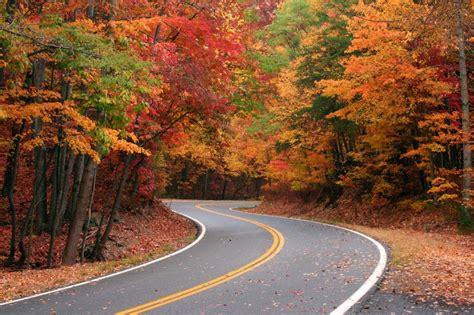 gatlinburg leaves changing colors