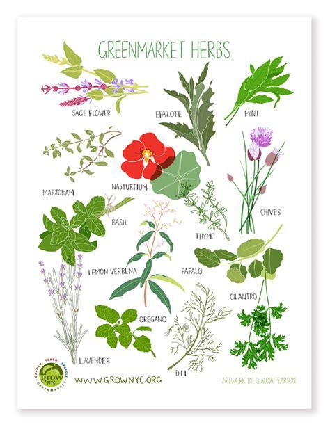 Www Ikea Usa Com herb poster claudia pearson illustration