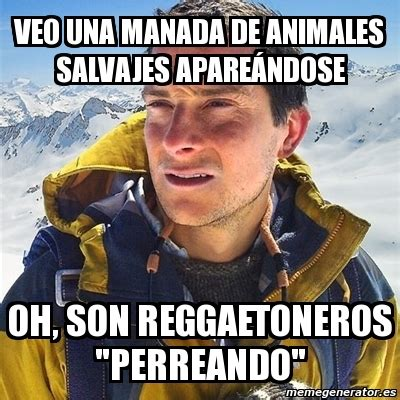 meme bear grylls veo una manada de animales salvajes apareandose  son reggaetoneros