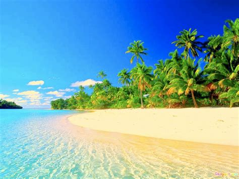 most beautiful beaches pictures to pin on pinterest pinsdaddy tropical beach paradise beautiful pictures tropical beach