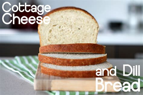 Cottage Cheese Dill Bread by Cottage Cheese And Dill Bread