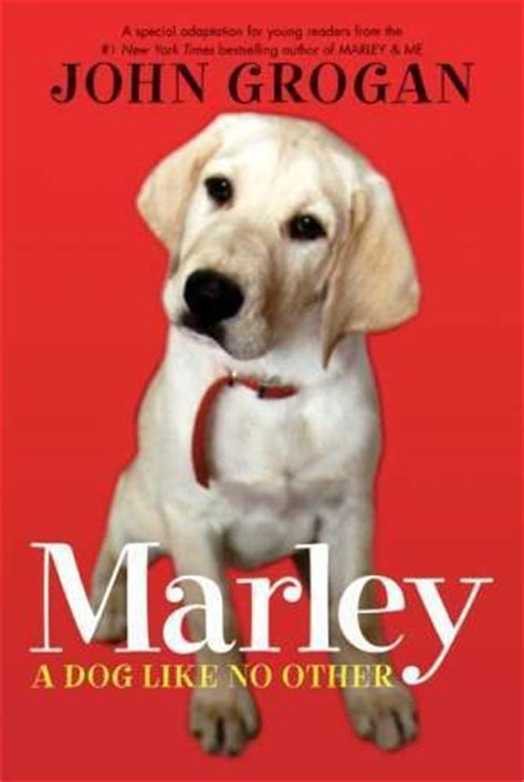 marley and me book report spiritual book review quot marley a like no other quot