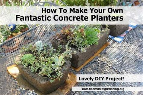 Make Your Own Planter by How To Make Your Own Fantastic Concrete Planters