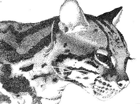 tutorial menggambar macan 12 contoh gambar pointilis untuk inspirasi anda afikrubik