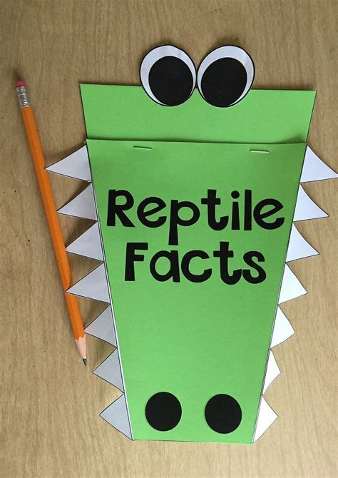 reptile crafts for best 25 reptiles preschool ideas on frogs