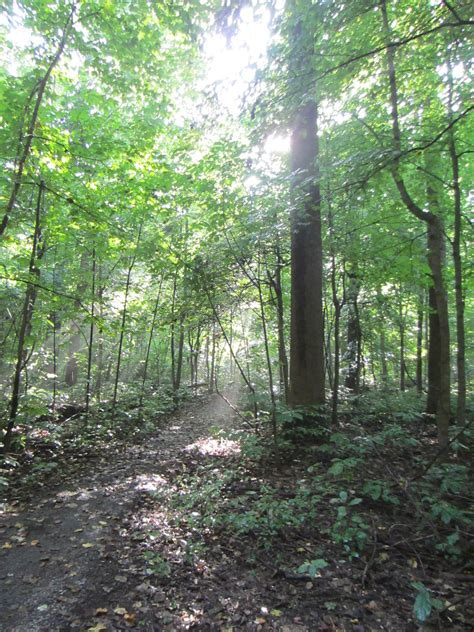 wesselman woods the indiana insider blog