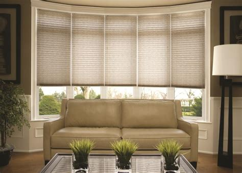 Pleated Shades For Windows Decor Bay Window Coverings Treatments For Bay Windows Budget Blinds