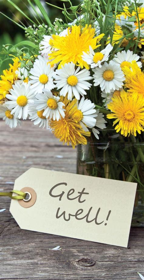 Get Well Flowers by Get Well Flowers Card All Occasion From Brookhollow