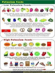 best 25 renal diet ideas on