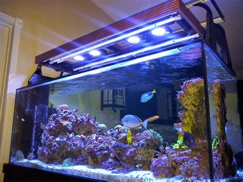 diy t5 aquarium lighting my diy hood for t5 radion led lighting marine depot blog