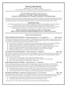 Resume Executive Summary by How To Write A Executive Summary Resume Writing Resume