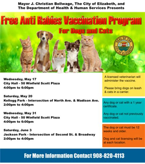 rabies vaccine for dogs rabies vaccine for cats