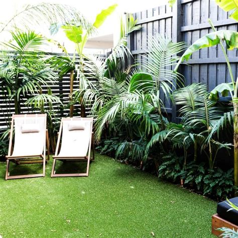 how to create a tropical backyard 1000 ideas about tropical backyard on pinterest