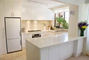contemporary custom kitchens with ideal storage cabinets