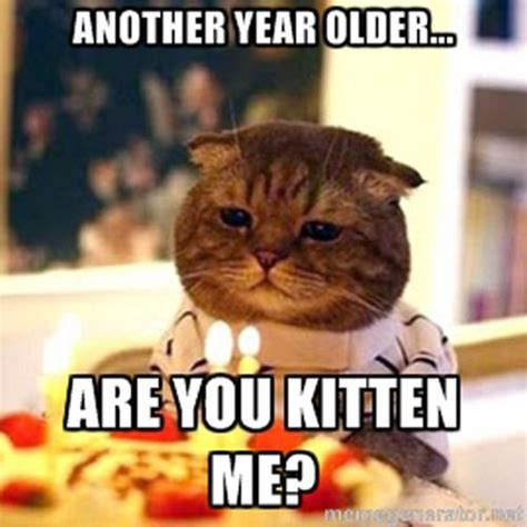 Funny Cat Birthday Meme - incredible happy birthday memes for you top collections