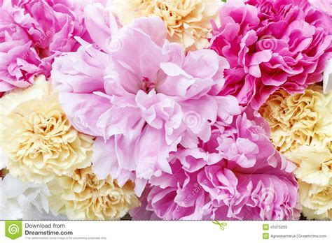 Stunning Pink Peonies, Yellow Carnations And Roses Stock