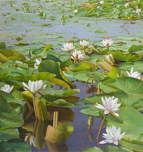 imagenes de flores sobre el agua cuadros modernos pinturas y dibujos pinturas de plantas
