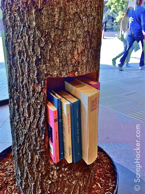 Tree Trunk Shelf by Funky Tree Trunk Shelf A Great Scraphack
